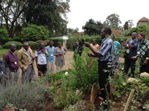 George teaching on harvesting Artemisia and taking cuttings during seminar May 2018