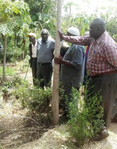 Leaders visit REAP Farm