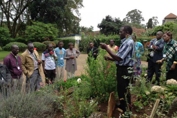 George teaching on harvesting Artemisia and taking cuttings during REAP Natural Medicines seminar in May 2018